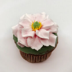 Eloise pink flower cupcake