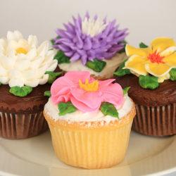 four-tip fantasy flower assorted cupcakes