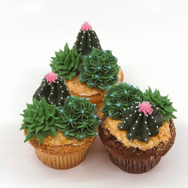 Sabra cactus cupcake