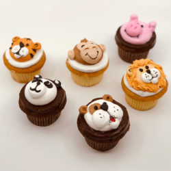 Animal Cupcake Assortment