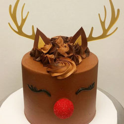 Rudolph the red-nose reindeer cake