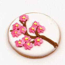 Cherry Blossom Novelty Cookie