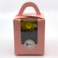 Individual packaging for flower pot pastry