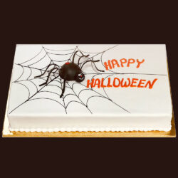 Halloween cake with spider and web